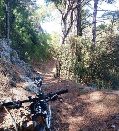 Rutes en bicicleta #1