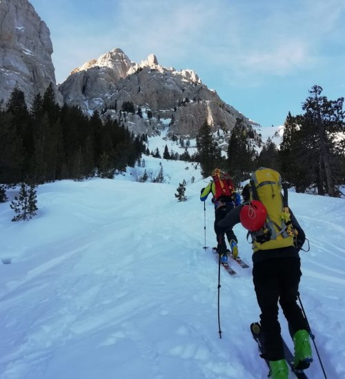 Altitud Extrem - Adventure Park