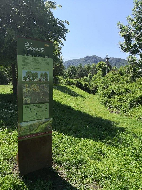Bany de Bosc Sèlvans a l'Itinerari Salvador Grau