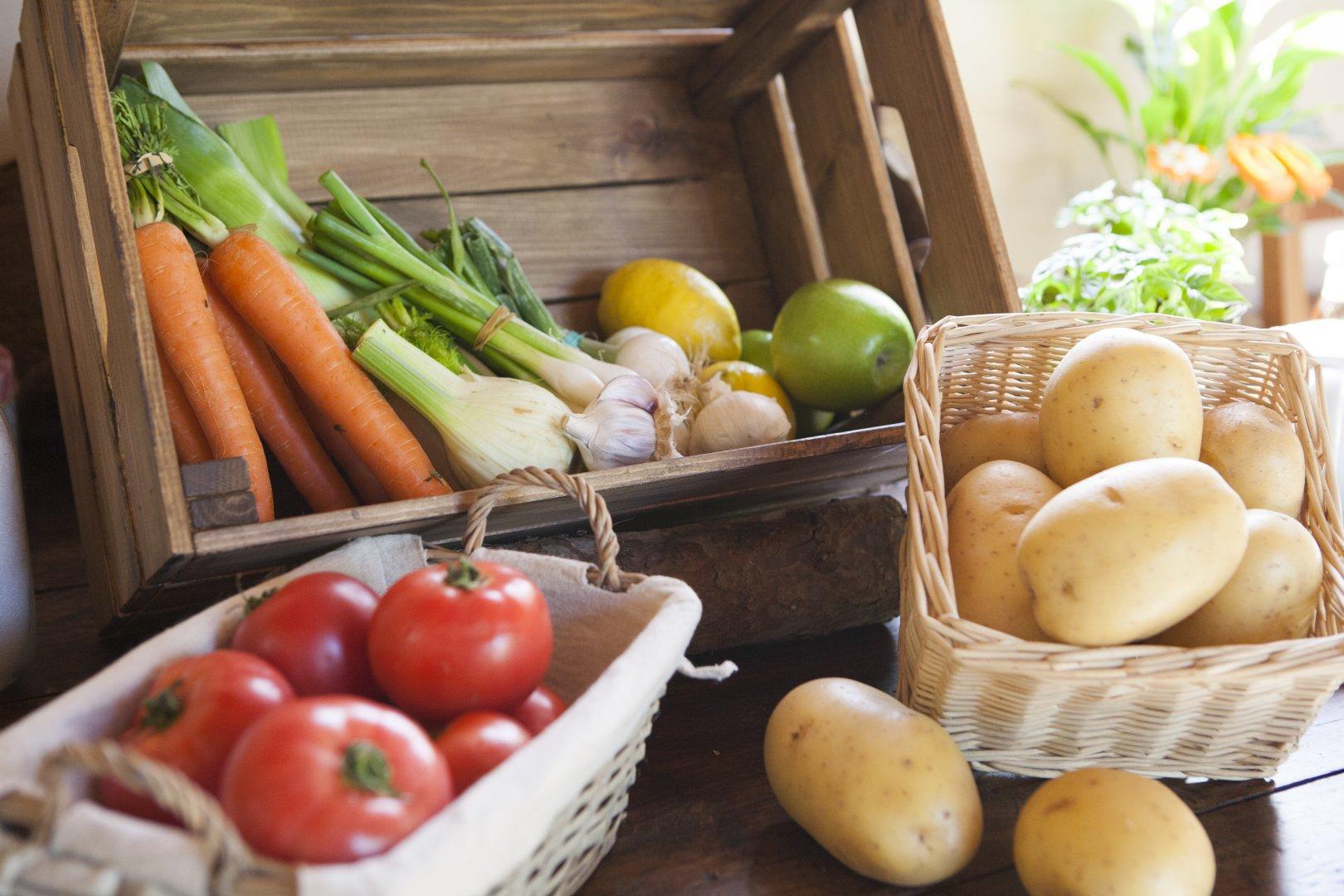 Taller de cuina amb producte local i de temporada